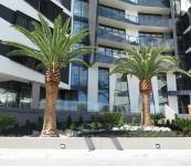 Sandy-Hill-Apartments-0021